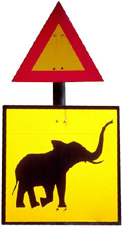 Beware of crossing the elephants. They never forget.